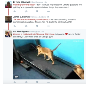 bigham cats